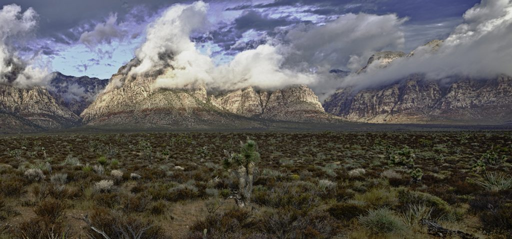 Las Vegas Nature Photography Day Red Rock Canyon